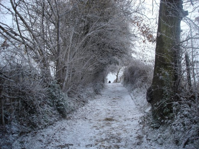 country road with snowcel and powderfrost